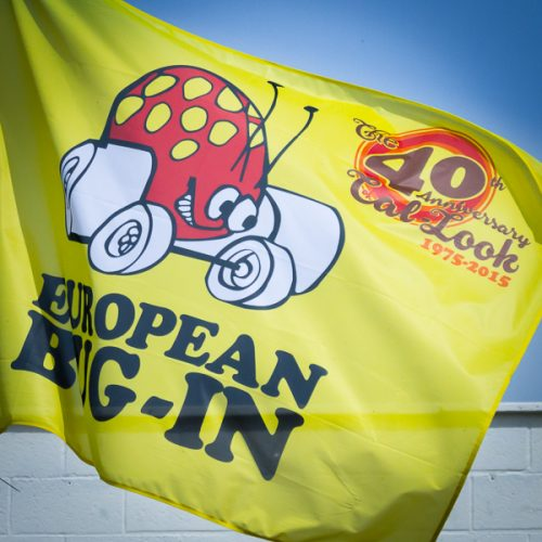 2015 European Bug-In 6